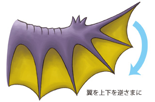 gorosuke-wing